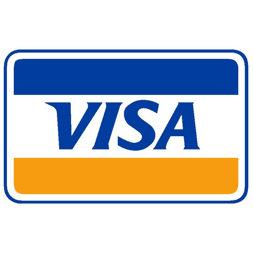 visa 138 logo.jpg