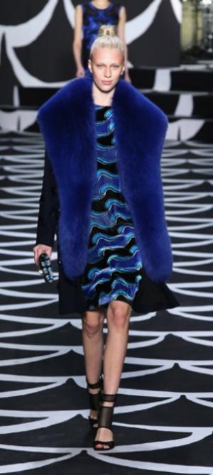 Diane Von Furstenberg Fall 2014 RTW