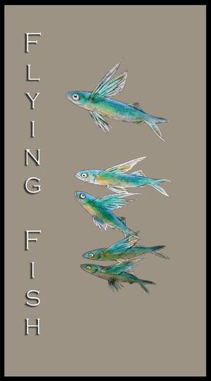 flyingfishlogo.jpg
