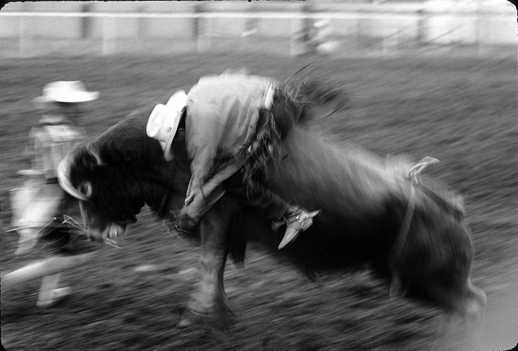 western or navajo bull riding.jpg