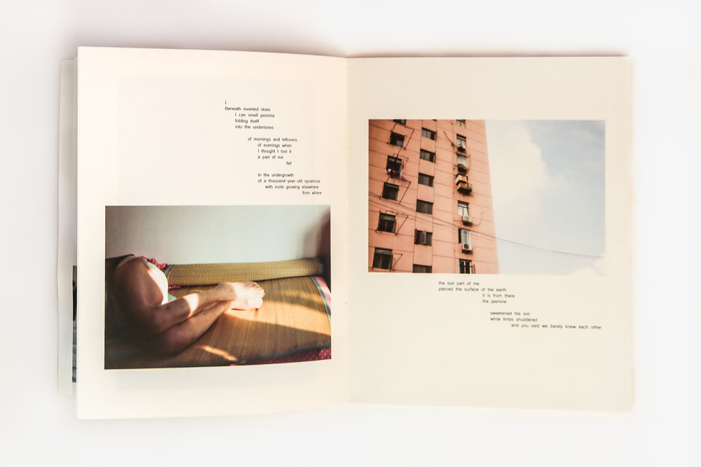 nostos book 1.jpg