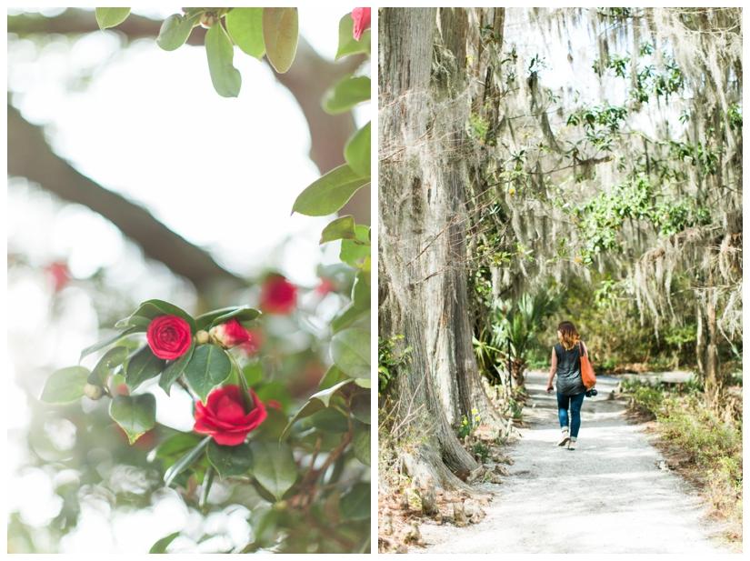 Charleston-6_WEB.jpg