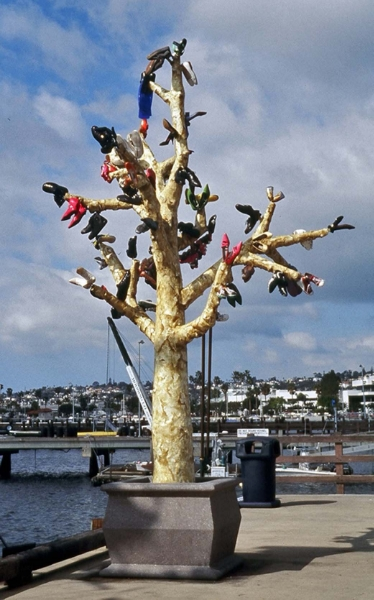 03 Shoe Tree.jpg