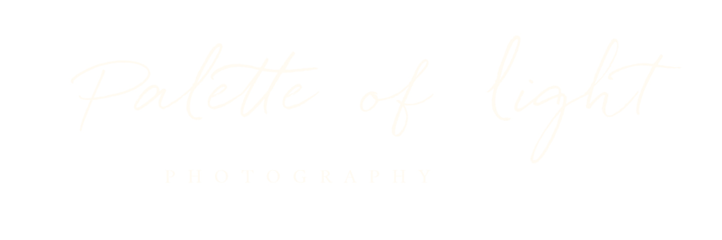 Palette of Light Photography & Video