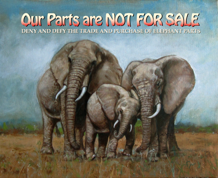 No Poaching Poster2.jpg