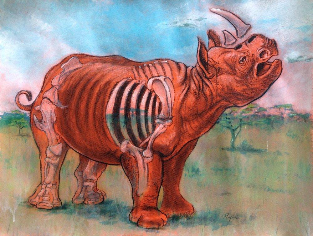 Rhino's Last Stand