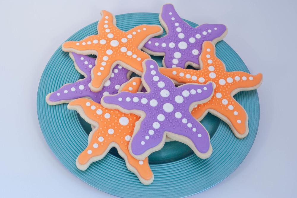 starfish19-1.jpg