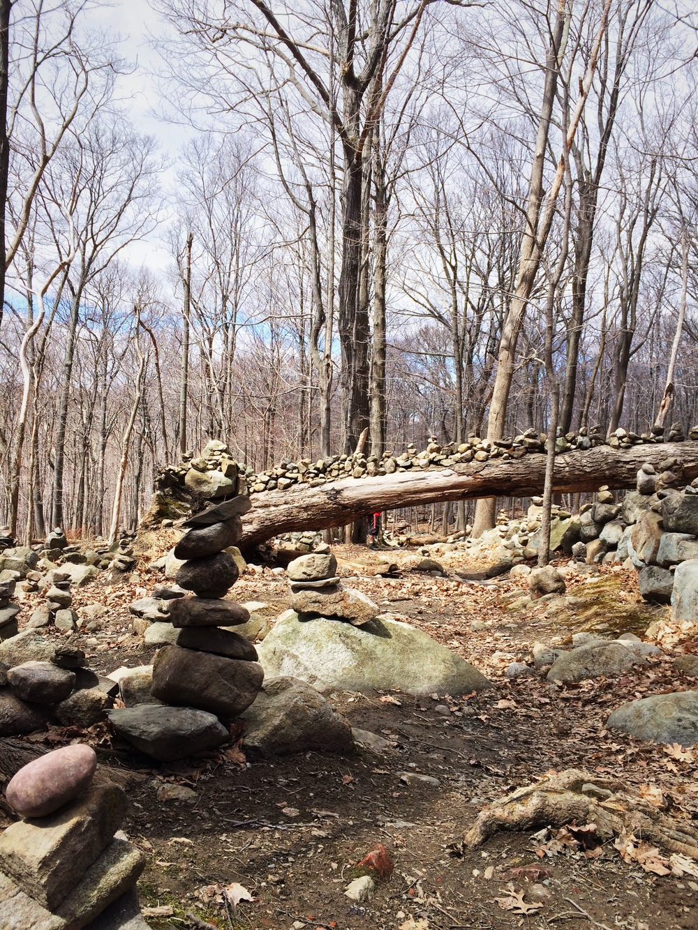 Trailmarkers or Cairns lined up as an art work more than a functional utility along the trail. They do make a pretty picture.