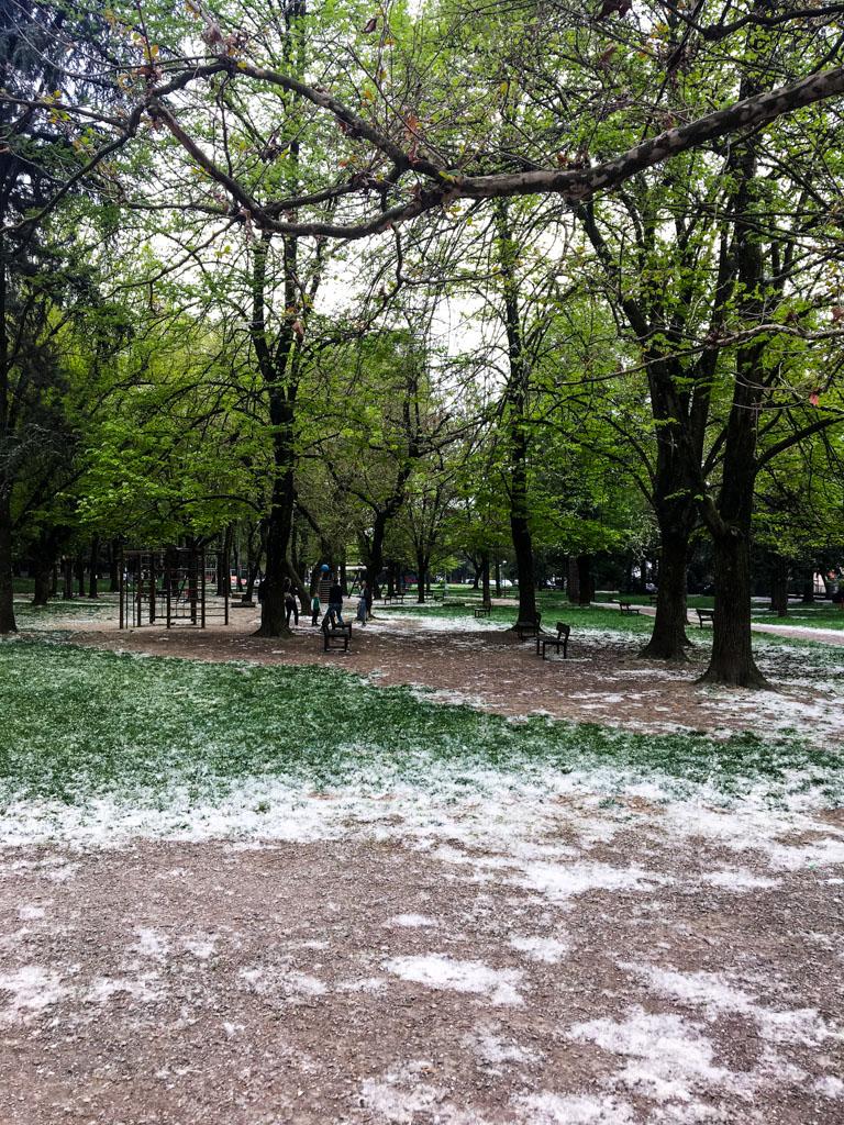 park-in-spring.jpg