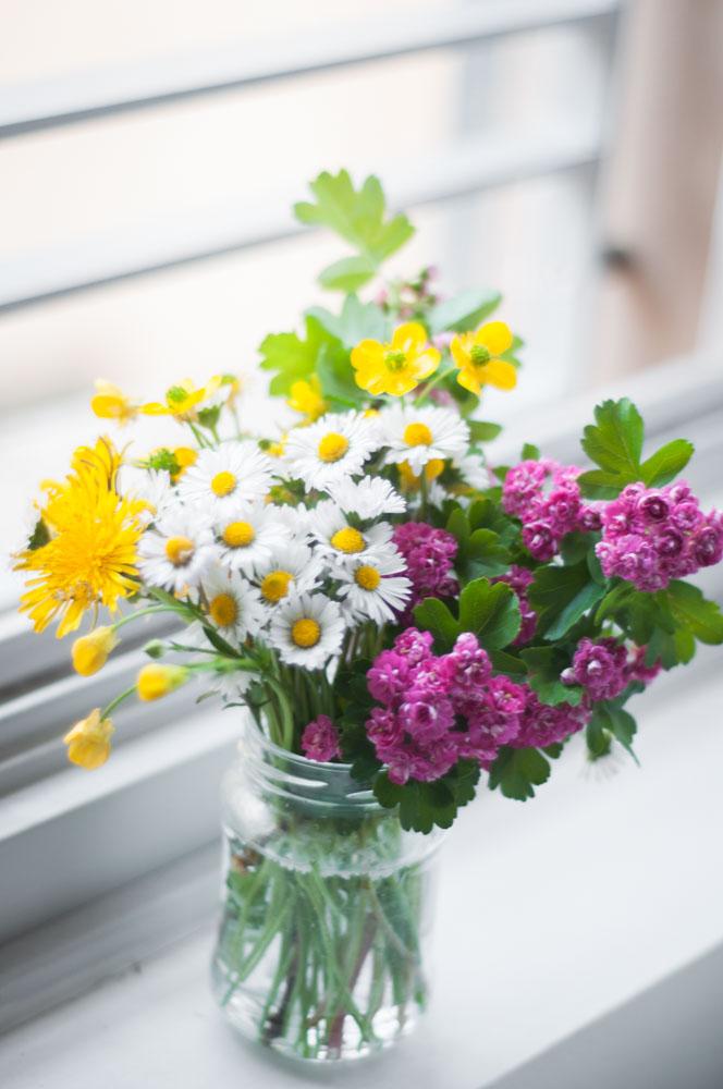 spring-wild-flowers.jpg