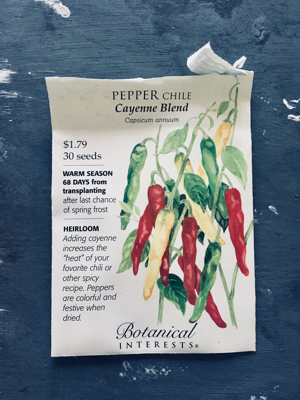 Peppers - Peppers take a long time to germinate and need hotter weather before they go outside. Start atleast 8 weeks before frost date. {This timing was spot on for me, 6 weeks to second leaf and now at 9 weeks (May 18) ready for the ground.}I started 6 seed pots of sweet peppers and 6 of spicy. The spicy ones take longer to germinate but they catch up pretty quick.I had little issue with plant height or any growing concerns with the peppers. So far, they have been the easiest to grow.