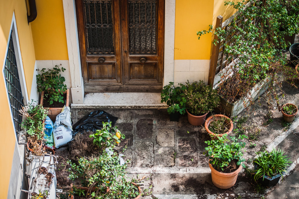 Bright-Colors-Inside-the-courtyard.jpg