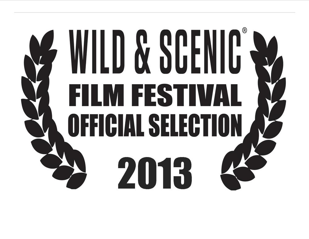 2013-WSFF-Official-Selection.jpg