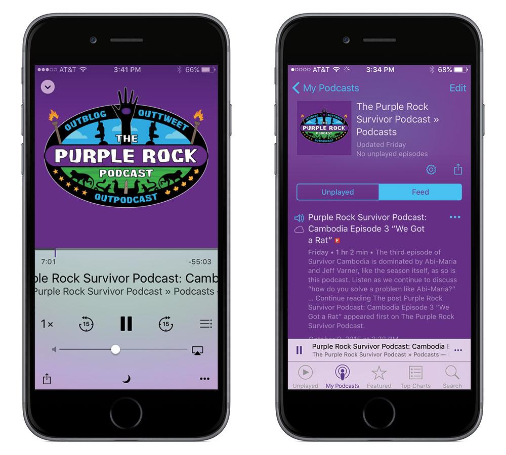 PurpleRockPod2.jpg