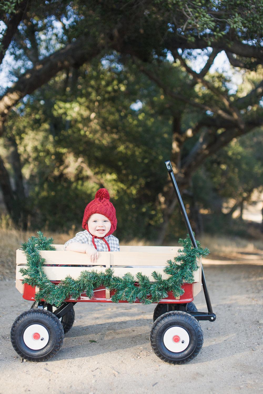 Quinn Christmas-11.jpg