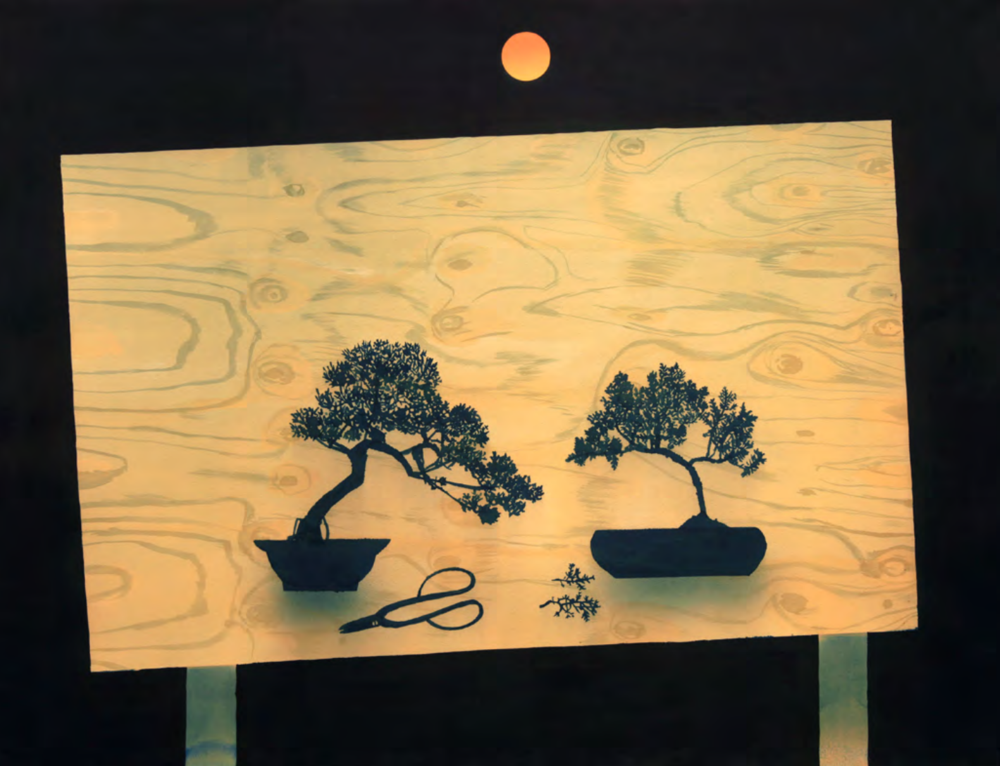 Cyanotype bonsai trees by Casey Roberts