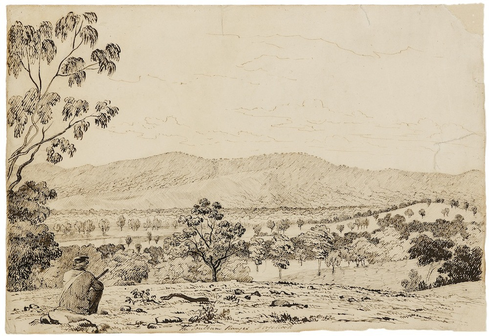 John Cotton the goulburn ranges doogallook ink on paper drawing
