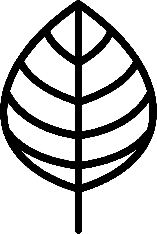 Arborist—woodsy