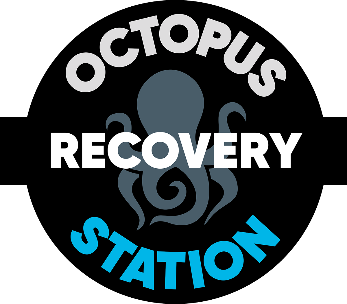Octopus Recovery Station