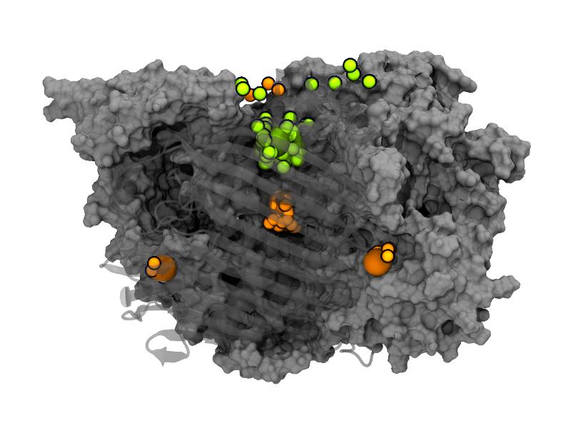 ion-binding2-PR37x_100-300ns.png