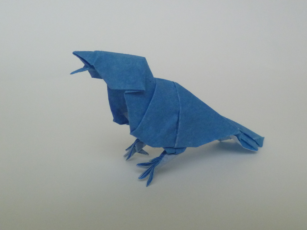 This is the sparrow design I came up with for the purpose of my short film, Living Origami: The Early Worm. It is also the pattern I used for my origami composition, Not Forgotten.     Each bird was folded from a single uncut sheet of paper, sparrow: tissue foil, blue bird: vellum/tissue M.C. duo paper. Designed and folded by Blake Derksen.