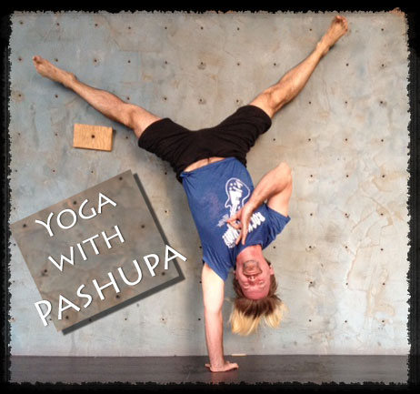 YOGA-WITH-PASHUPA-ONE-ARM-HANDSTAND