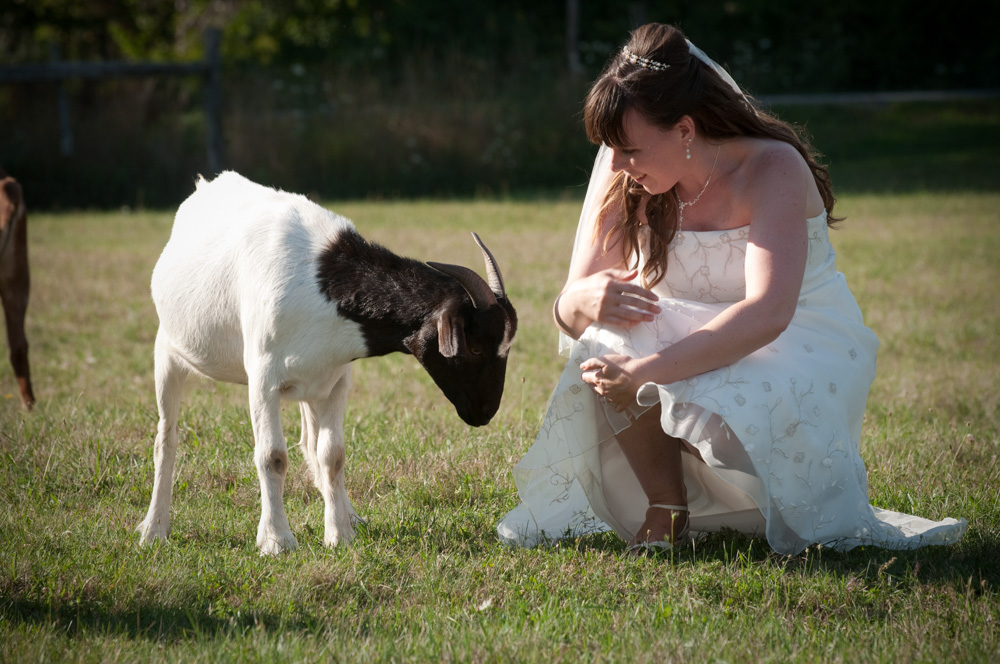 Petrina the bride with Annie the goat!