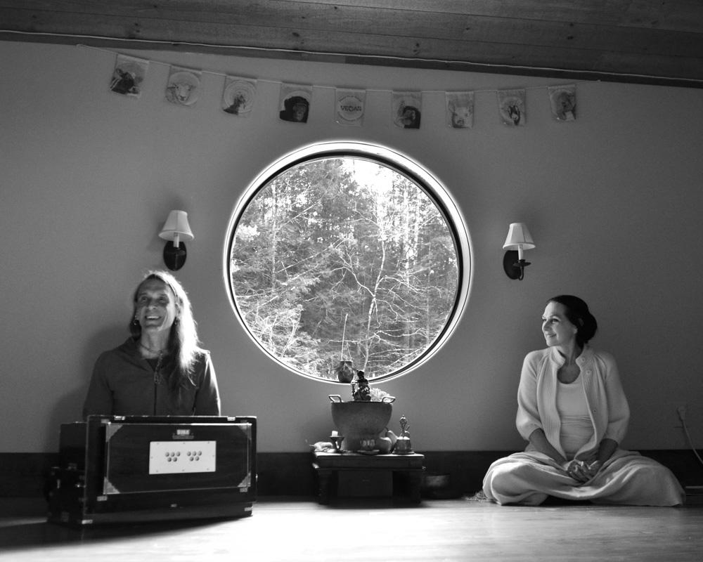 David and Sharon at Wild Woodstock