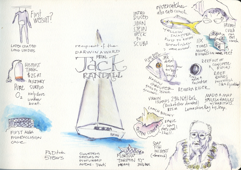 Sketch book notes from the 2016 Darwin Medal Award presentation by Dr. Jack Randall. For more information about him at the Bishop Museum visit