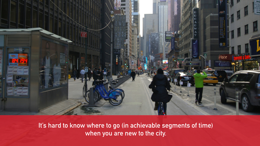 Citi Bike DIPS Final Presentation.005.jpg