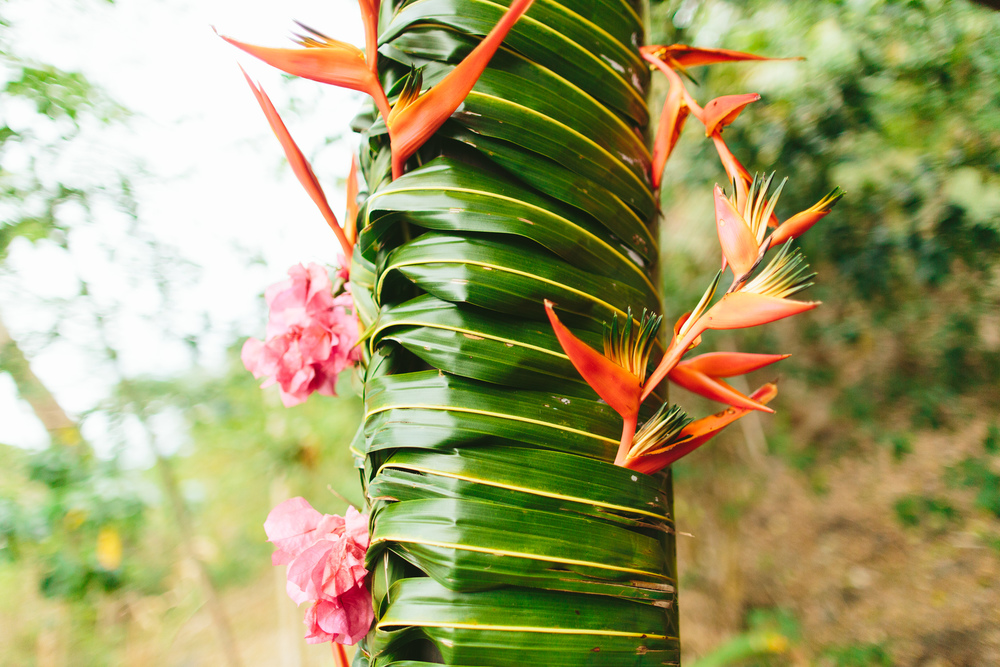 Tropical Flowers - The Remote Resort, Fiji Islands