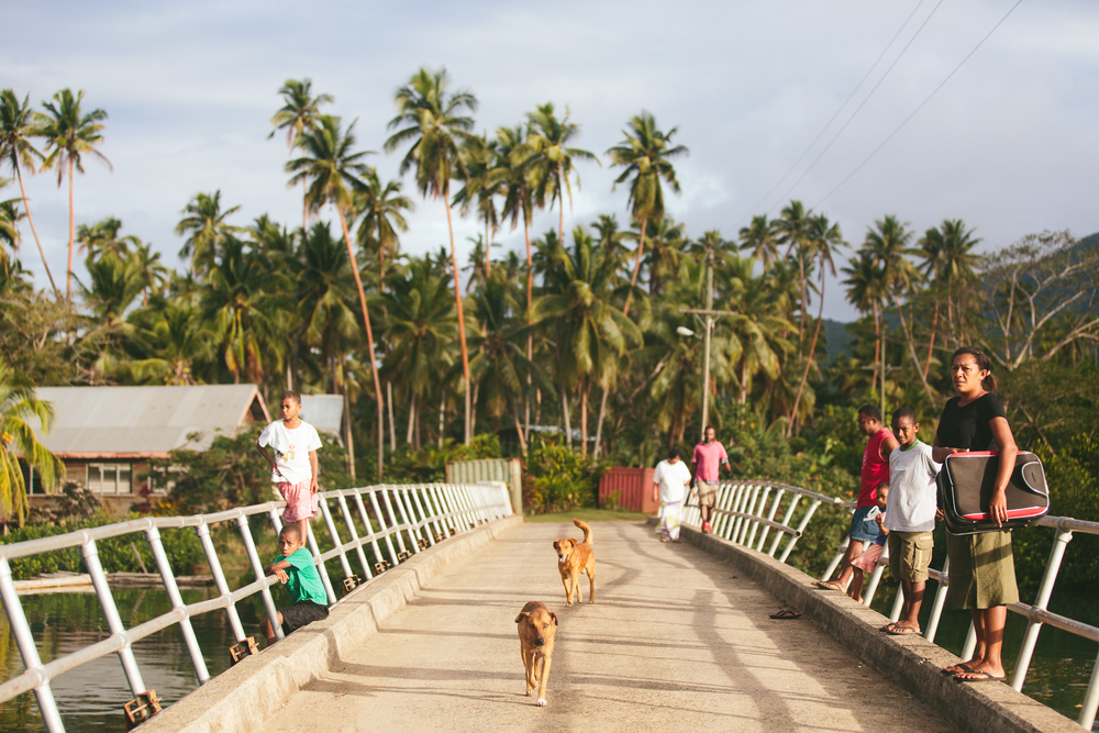Buca Bridge Vanua Levu Fiji Islands