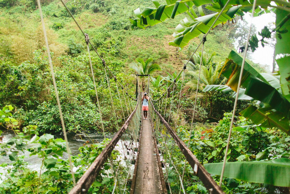 Swinging Bridge - Lavena Coastal Walk - Taveuni - The Remote Resort, Fiji Islands
