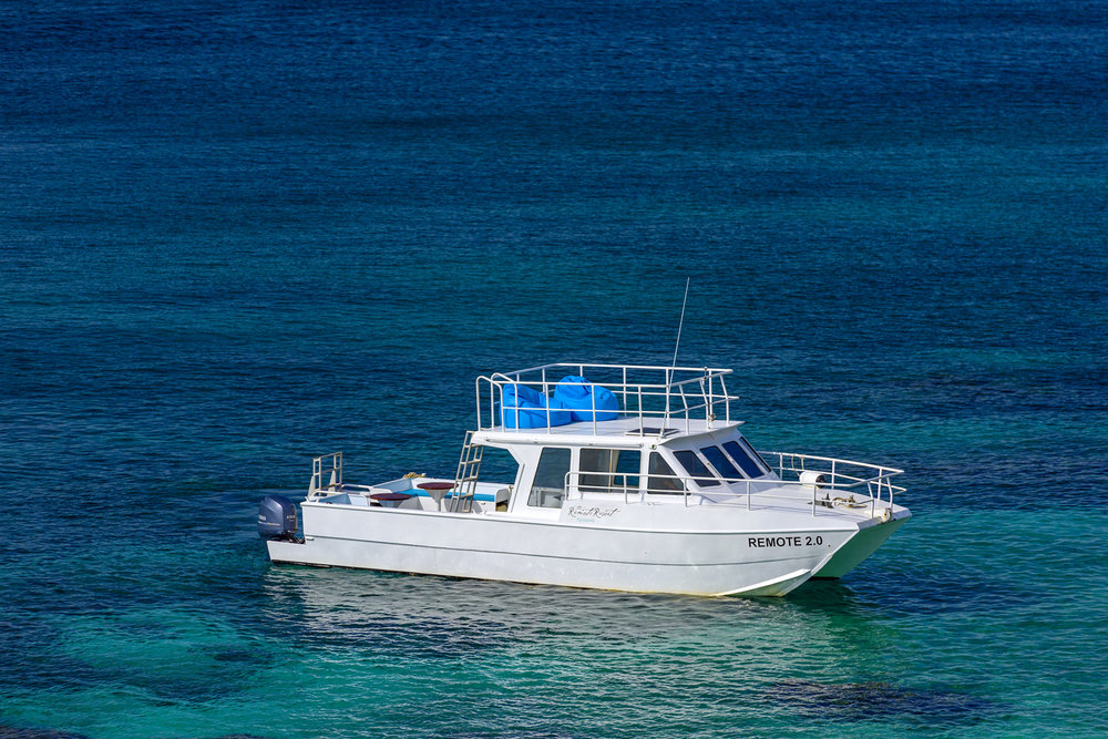 Fiji Resort - Remote 2.0 Boat on the Rainbow Reef, Vanua Levu