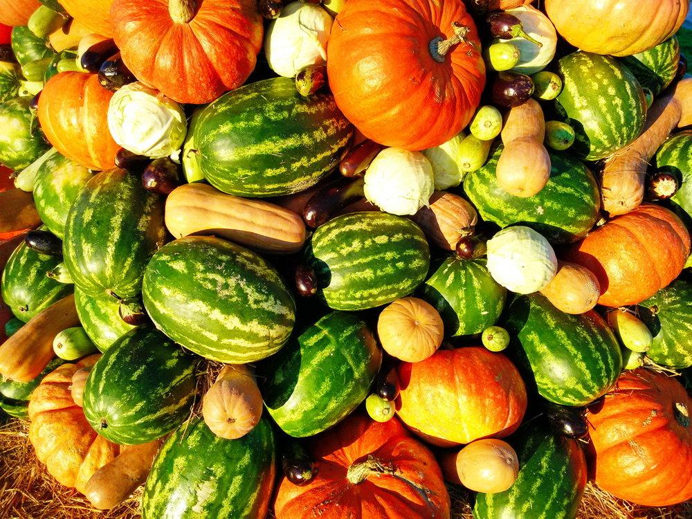 5 тонн овощей