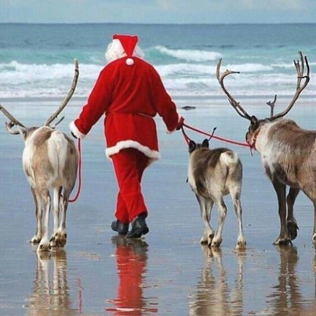 Santa has come and gone from Mount Martha. Milkbar & Co is reopening for summer tomorrow #summer #morningtonpeninsula #cafelife #healthyfood #tastyfood #bestcafeonthecoast