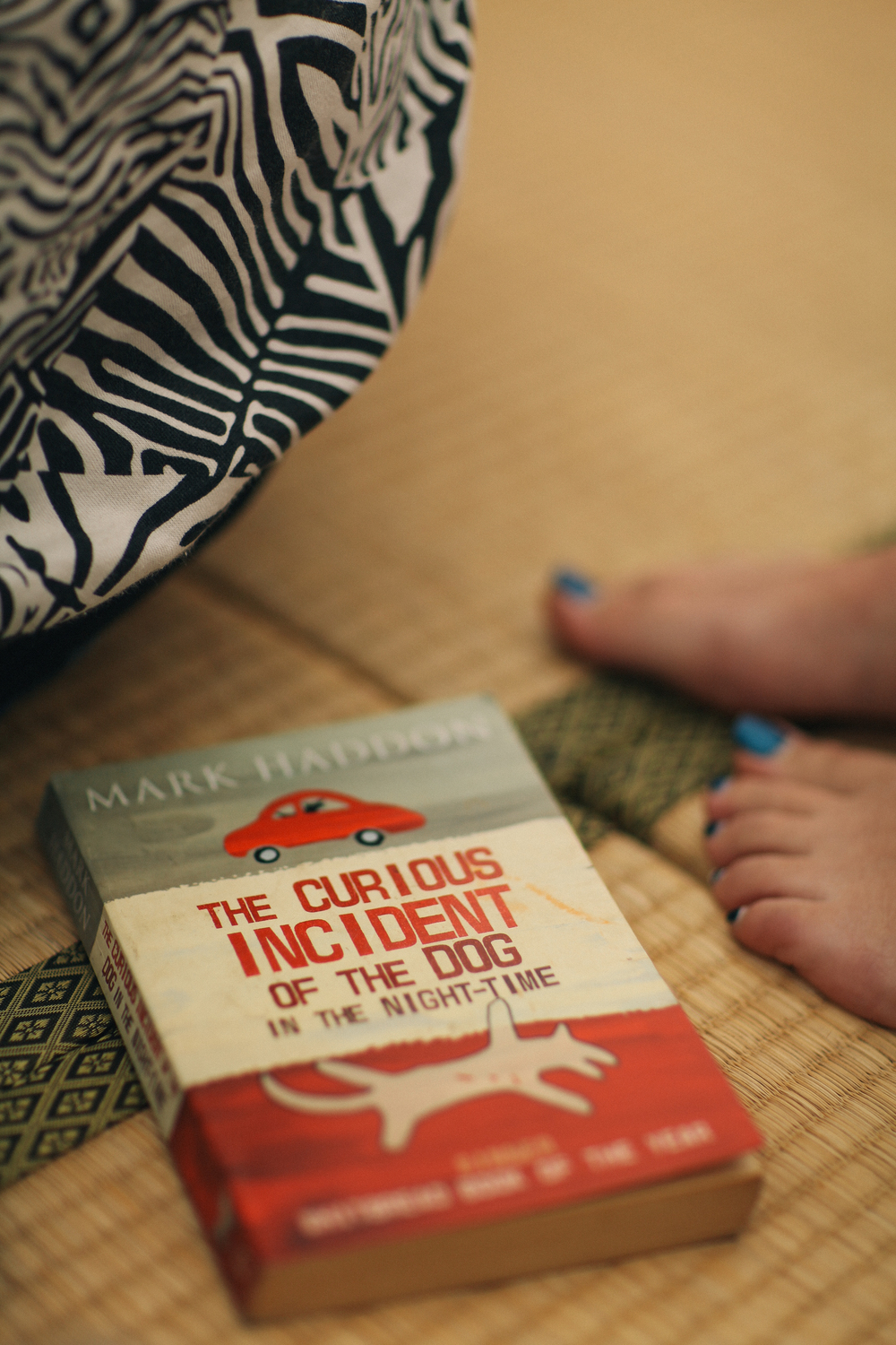 Recommended read:  The Curious Incident of the Dog in the Night-Time