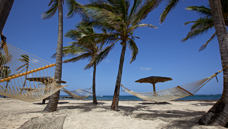 Nisbet's Beach