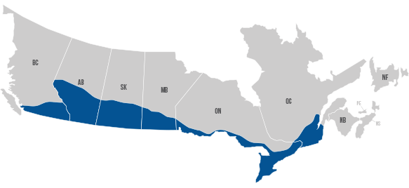 Celadon Canada Hiring Areas