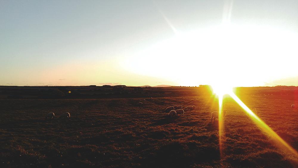 View-Fowberry-Farm-Sunset-Bamburgh-Tori's-Tales