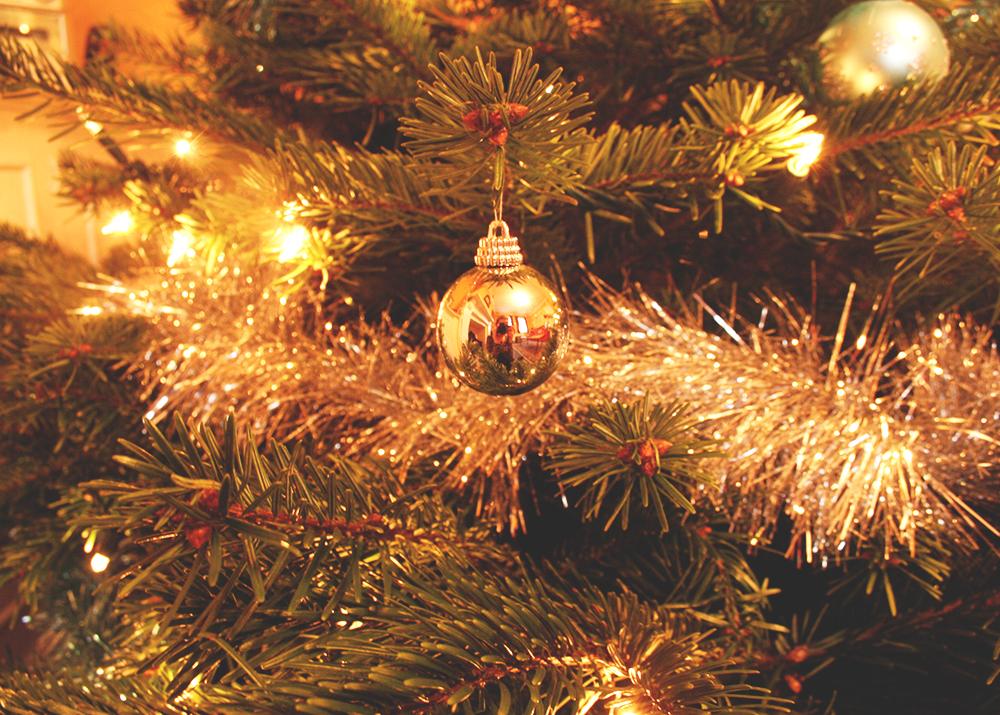 between-lenses-reflection-christmas-toristales