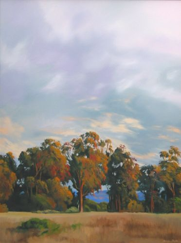 Ellwood Trees 2, 48 x 36""