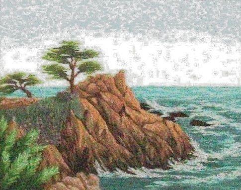 "Lone Cypress,7.5 x 9.5"""