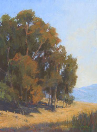 """Ellwood Eucalyptus ,11 x 15"""""""