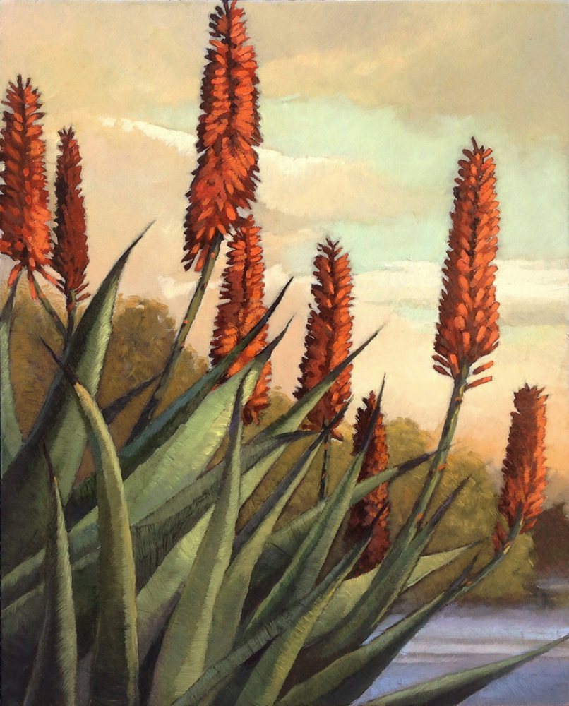 Aloes at the Bird Refuge oil-board, 10x8