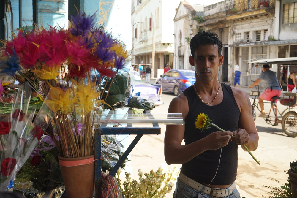 Guy with sunflower, rickshaw in background