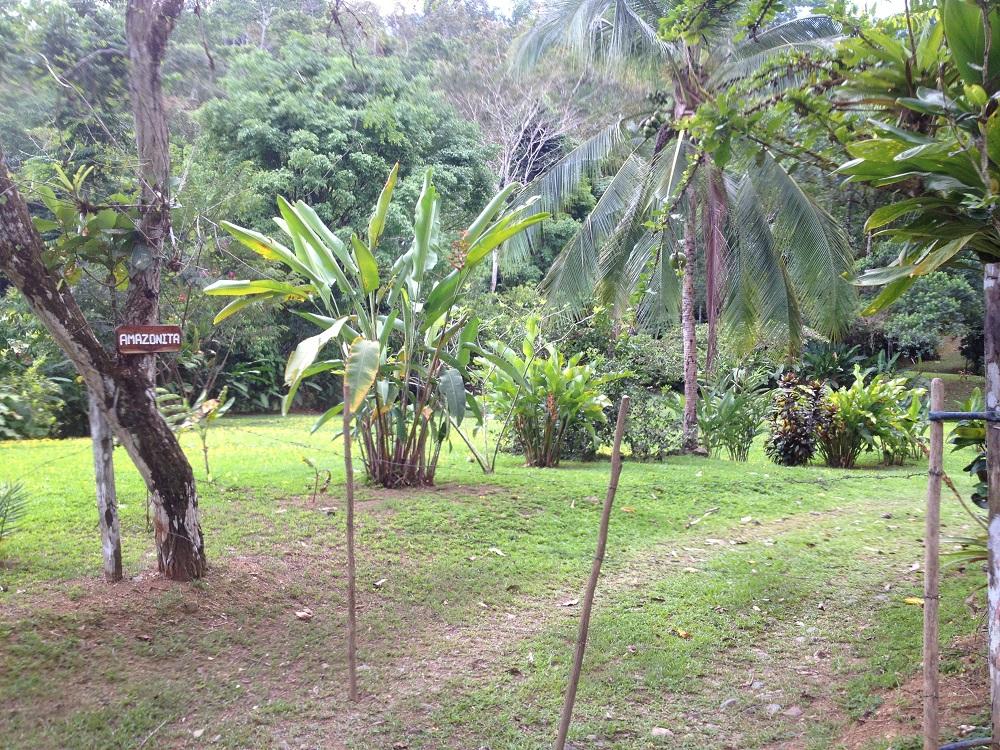 Entrance to Amazonita