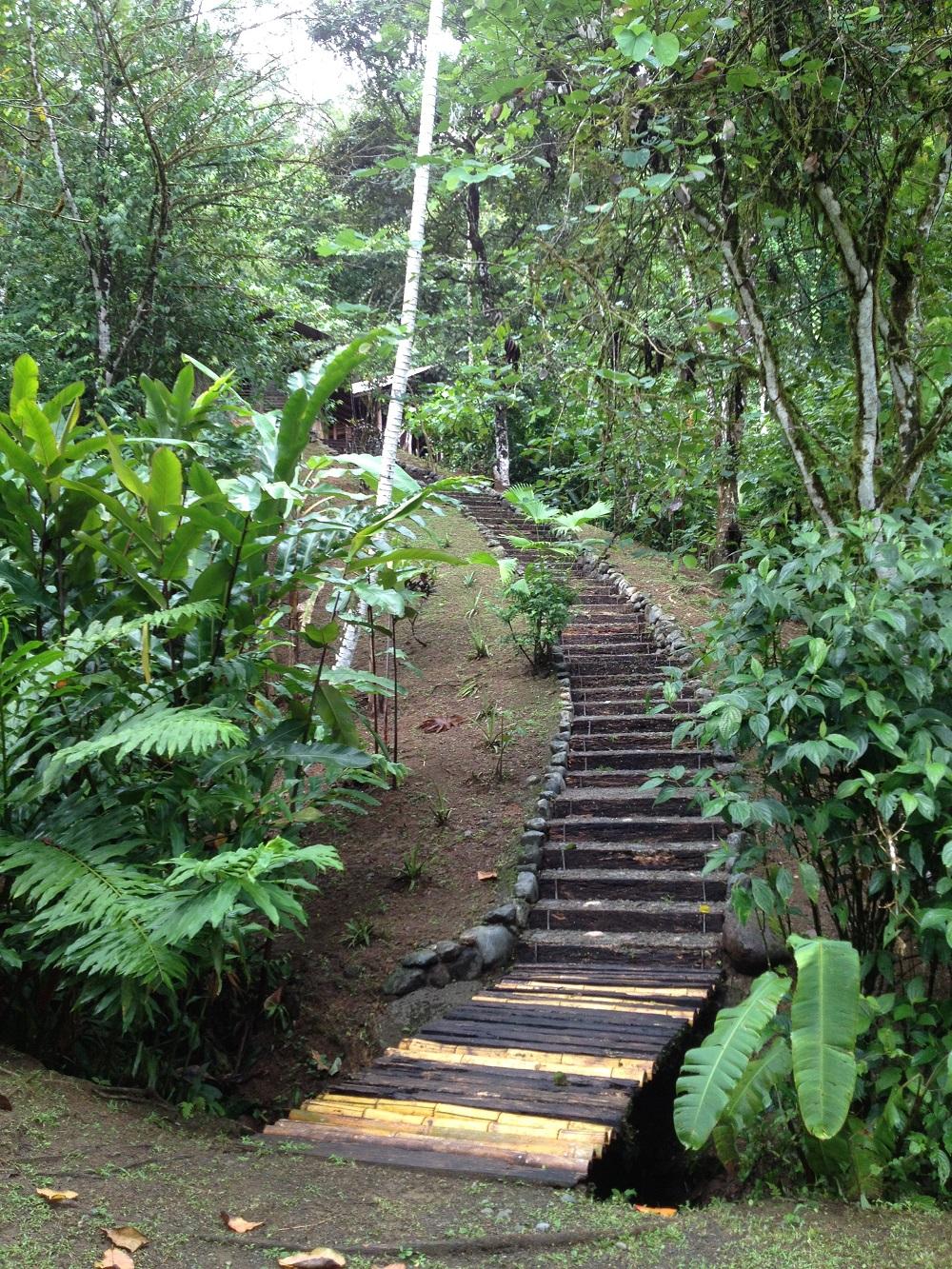 Path to Casa Zenon