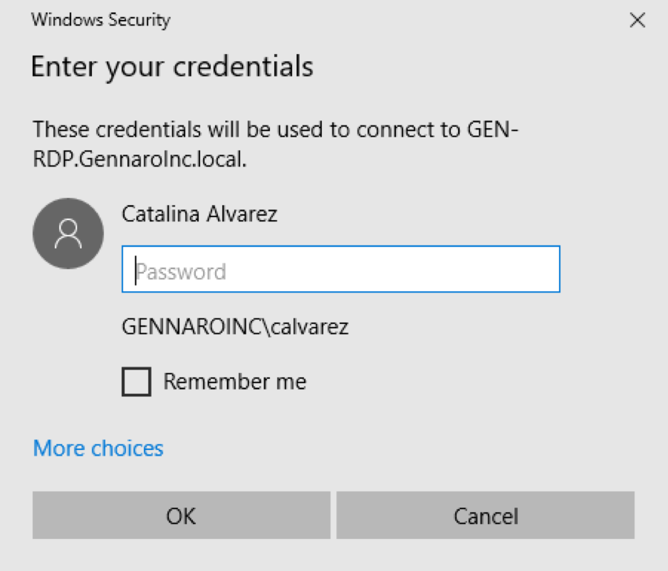 Now you will be asked to authenticate the application. If asked, use your computer username and password to login here. Please make note that the username must be domain\user, or as the example is above gennaroinc\calvarez.