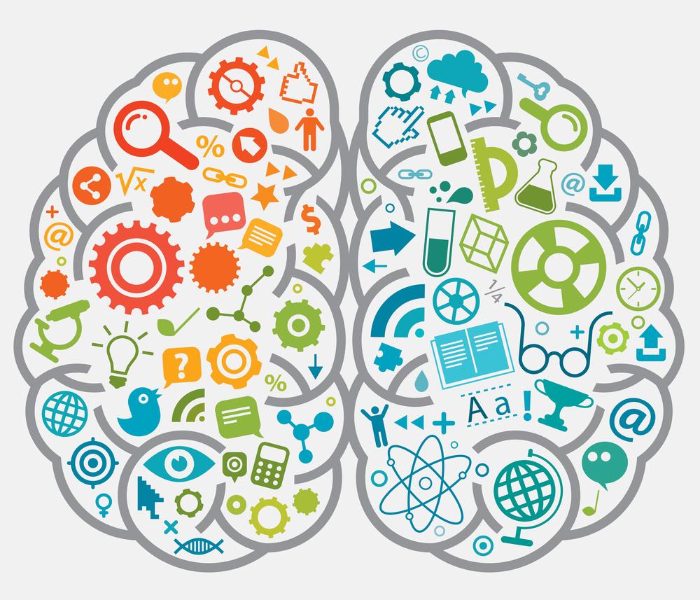 Brain for WFG.jpg